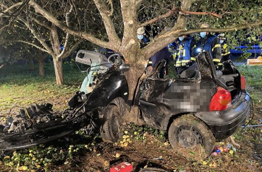 Junger Autofahrer prallt gegen Baum – 21-jährige Beifahrerin stirbt