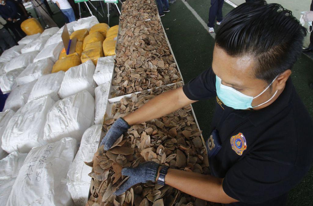 Fast 6 000 Tiere wurden für die Schuppen getötet und aus Afrika über die Türkei nach Thailand gebracht. Das Schmuggelgut ist auf dem Schwarzmarkt rund eine Millionen Euro wert. Foto: AP