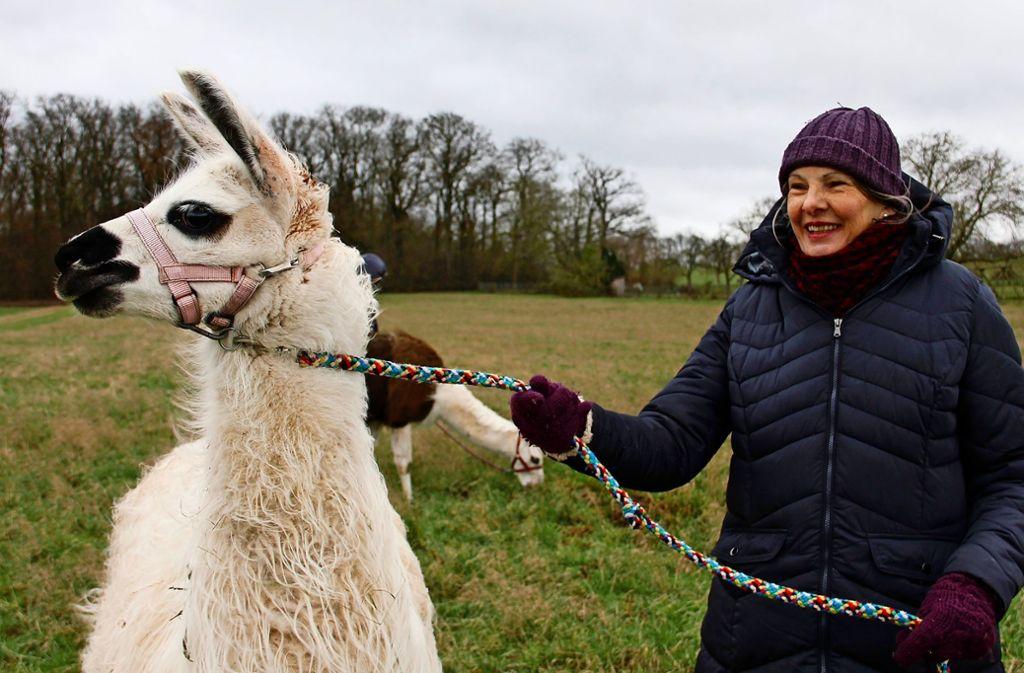 Claudia Ade besitzt zehn Lamas und Alpakas, die Jung und Alt begeistern. Sie schätzt die Neugier und Ruhe der possierlichen Tiere. Foto: Marta Popowska