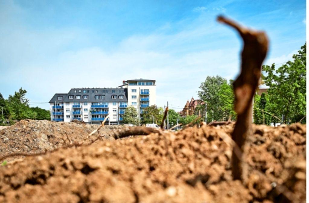 Im Rosensteinviertel baut das Siedlungswerk Wohnraum. Foto: Heinz Heiss