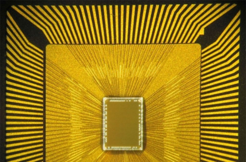 Vor zwei Jahren hat IBM den Cognitive Computing Chip vorgestellt, der die Arbeitsweise des Gehirns nachahmt. Die von der EU ausgewählten Milliardenprojekte gehören ebenfalls zur Computertechnologie. Foto: dpa