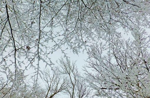 So schön ist Stuttgart im Winter