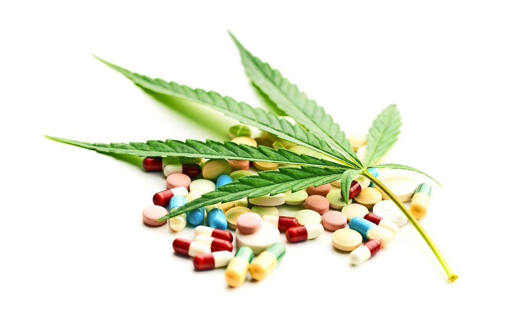 Cannabis ist der Shootingstar unter den Arzneimitteln, wird aber als solches nur begrenzt eingesetzt. Foto: 89924693