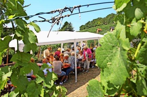 Wein und Sonnenschein locken zahlreiche Besucher