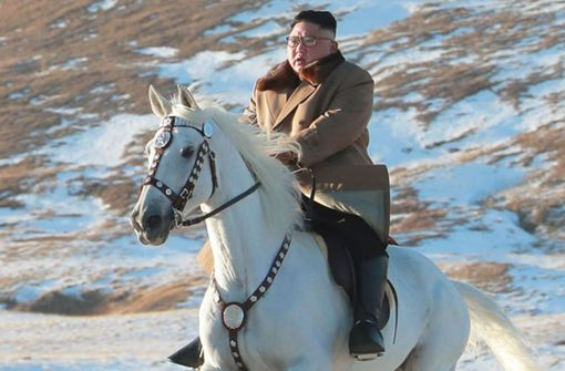 Pferdenarr und Raketenfan – Nordkoreas Diktator    Kim Jong Un  reitet wieder