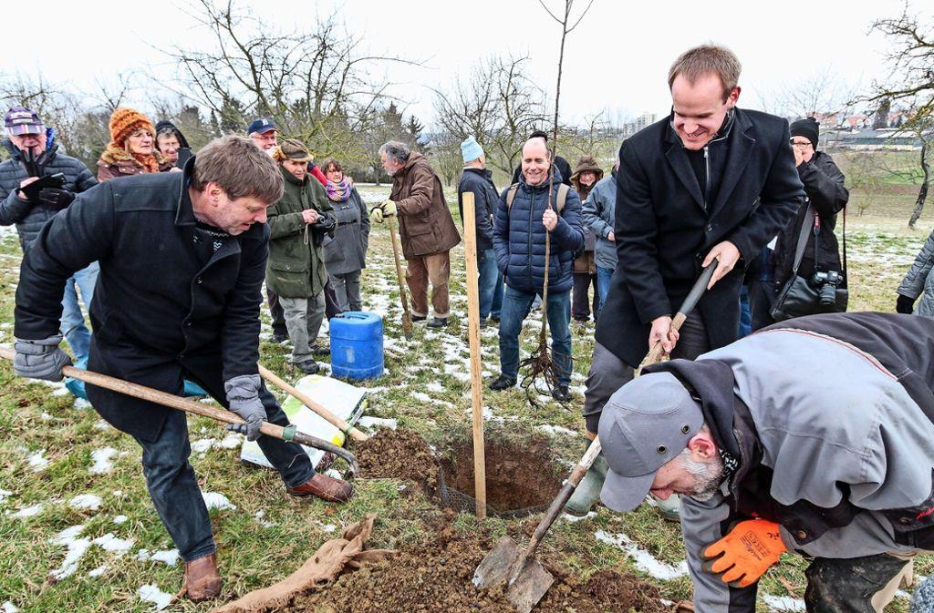 Markus Rösler (links) und Bürgermeister Thomas Schäfer greifen zu Schippe und Spaten. Geerntet werden die ersten Luikenäpfel frühestens in sieben oder acht Jahren. Foto: factum/Bach