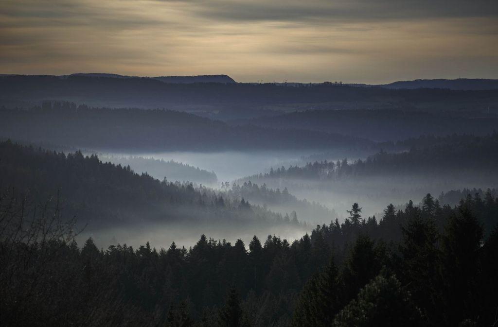Auf einer Nebenstrecke im sonst so idyllischen Schwäbischen Wald zwischen Alfdorf und Kaisersbach ist es zu einem tragischen Unfall gekommen Foto: Gottfried Stoppel