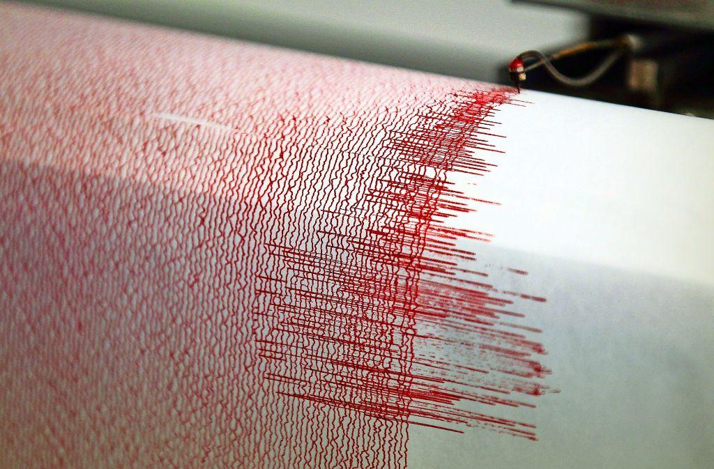 Die Angst vor einem kräftigen  Ausschlag des Seismografen ist in  Hilzingen und im Konstanzer Landratsamt nicht allzu groß.  Beunruhigt ist die Bevölkerung  dennoch –  wegen der  Pläne  für ein  Endlager im nahen Schweizer Benken. Foto: dpa