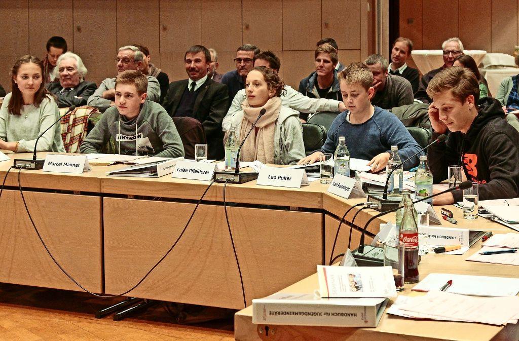 Die ersten Ditzinger Jugendgemeinderäte – bei ihrer konstituierenden Sitzung im Oktober 2015 Foto: factum/Archiv