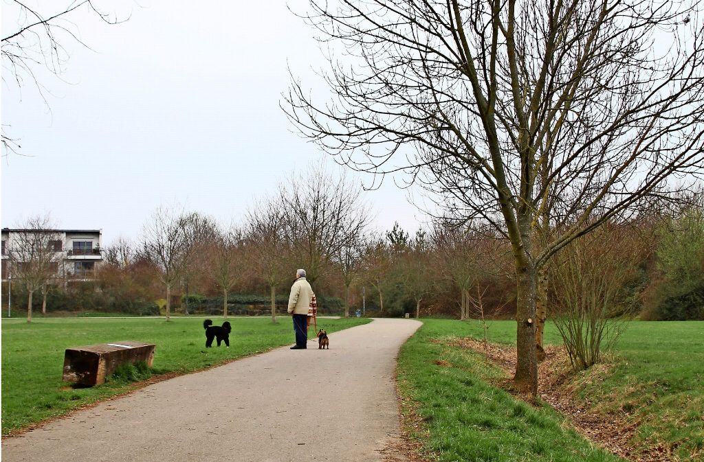 Anwohner sehen den Grünzug im Gebiet Birkhof in Gefahr. Foto: Sabrina Höbel