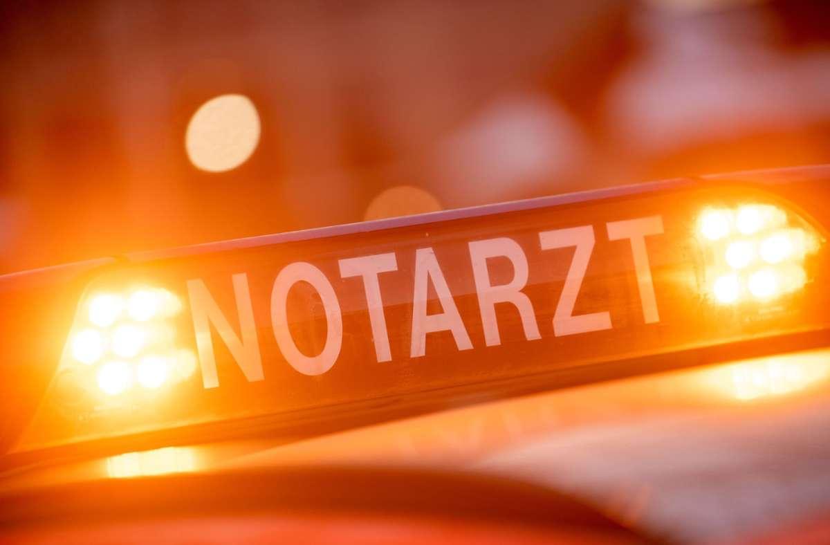 Eine 43-Jährige ist in Ludwigsburg von einem umstürzenden Baum schwer verletzt worden. Foto: picture alliance/dpa/Lino Mirgeler
