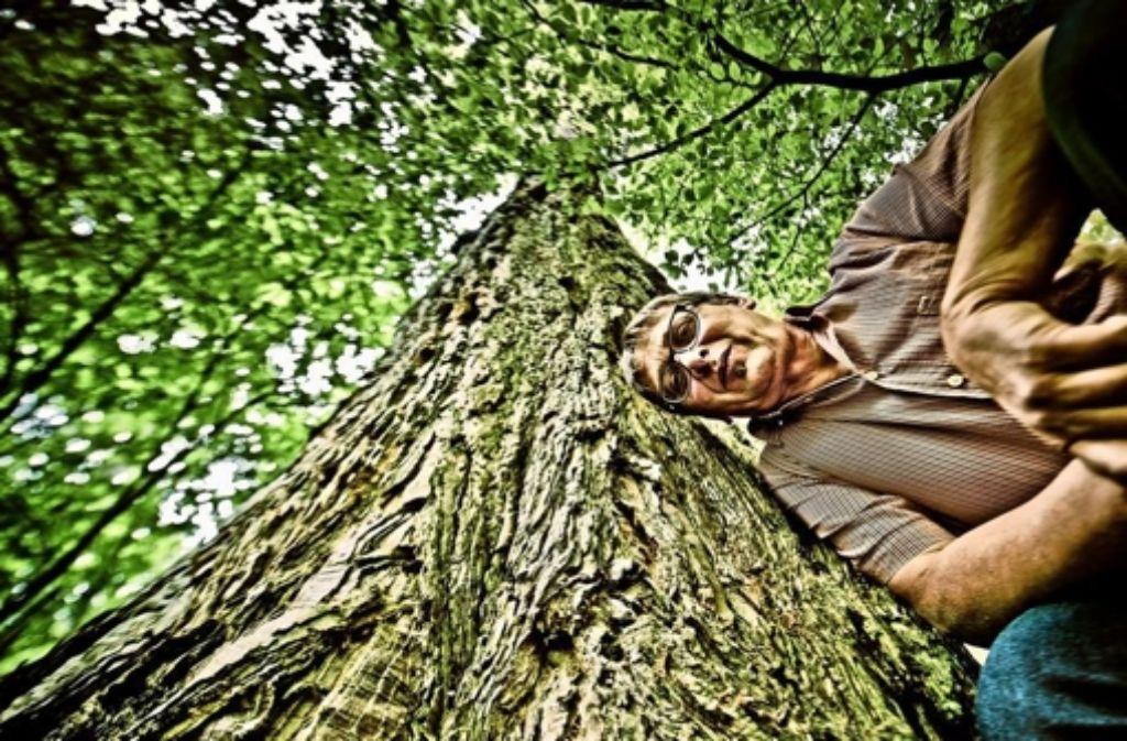 Lutz Krüger hat über Mammutbäume geforscht. Die Riesen hätten ihn berührt, sagt er. Er habe sie deshalb nicht vergessen können. Foto: Andreas  Reiner
