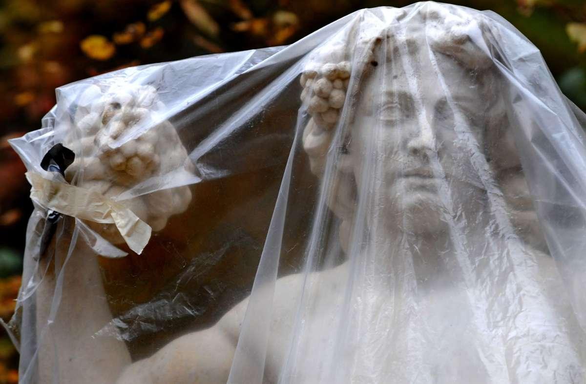 Folie – praktisch, aber schlecht für die Umwelt. Foto: AP/SVEN KAESTNER