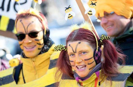 Die Bienen haben gewonnen