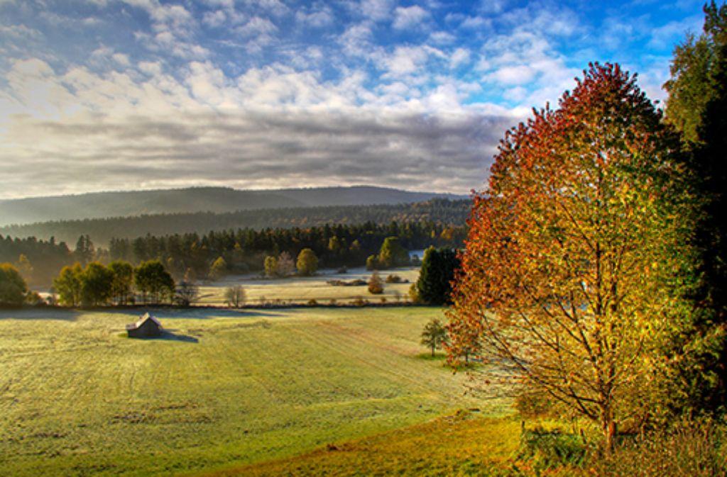 Schwarzwald im Herbst entdecken! Wandern und Wellness gleich vor der Haustür!  Foto: Nördlicher Schwarzwald
