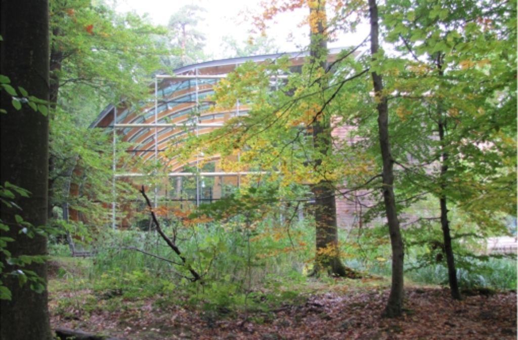 Das Haus des Waldes liegt an einem Ort, über den es informieren will: in der Natur. Foto: Sägesser
