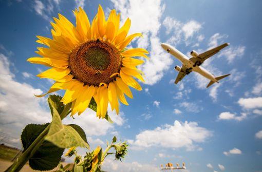 Umweltschutz: Muss ich mich für meinen Urlaub schämen?