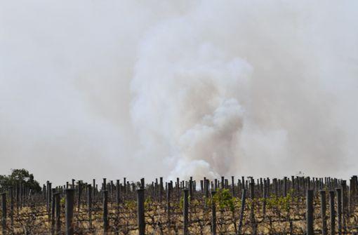 Rauch der Buschbrände erreicht Südamerika