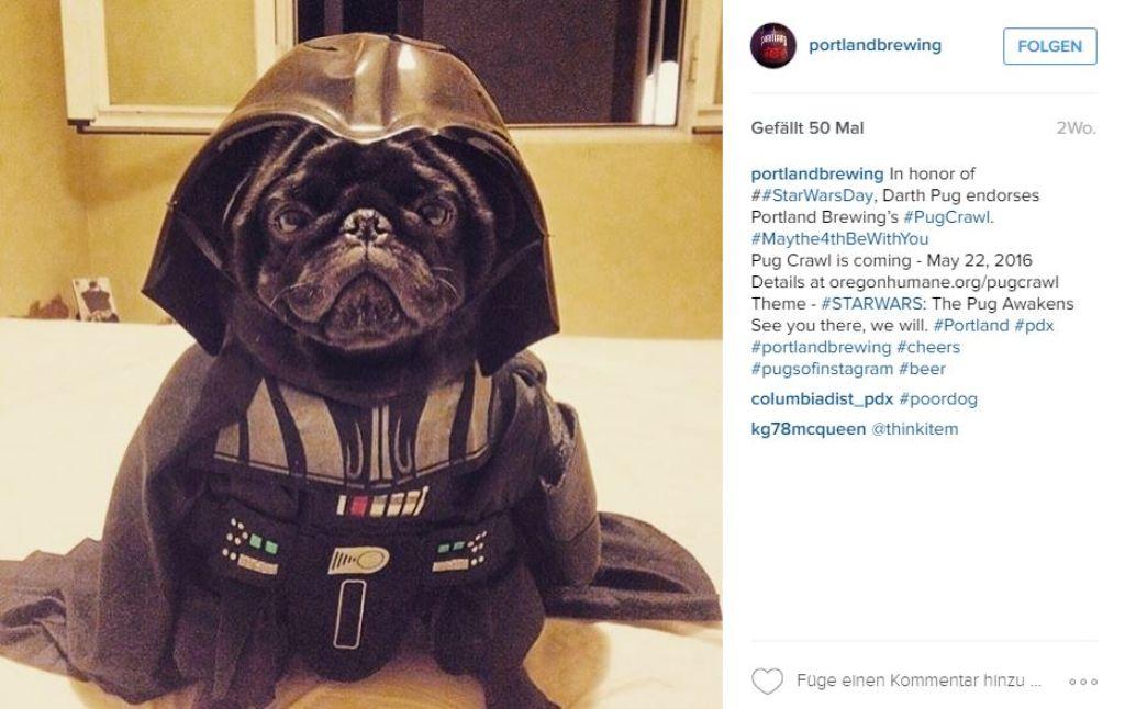 Beim #pugcrawl drehte sich alles um Möpse in Star-Wars-Outfits. Foto: Screenshot Instagram / portlandbrewing
