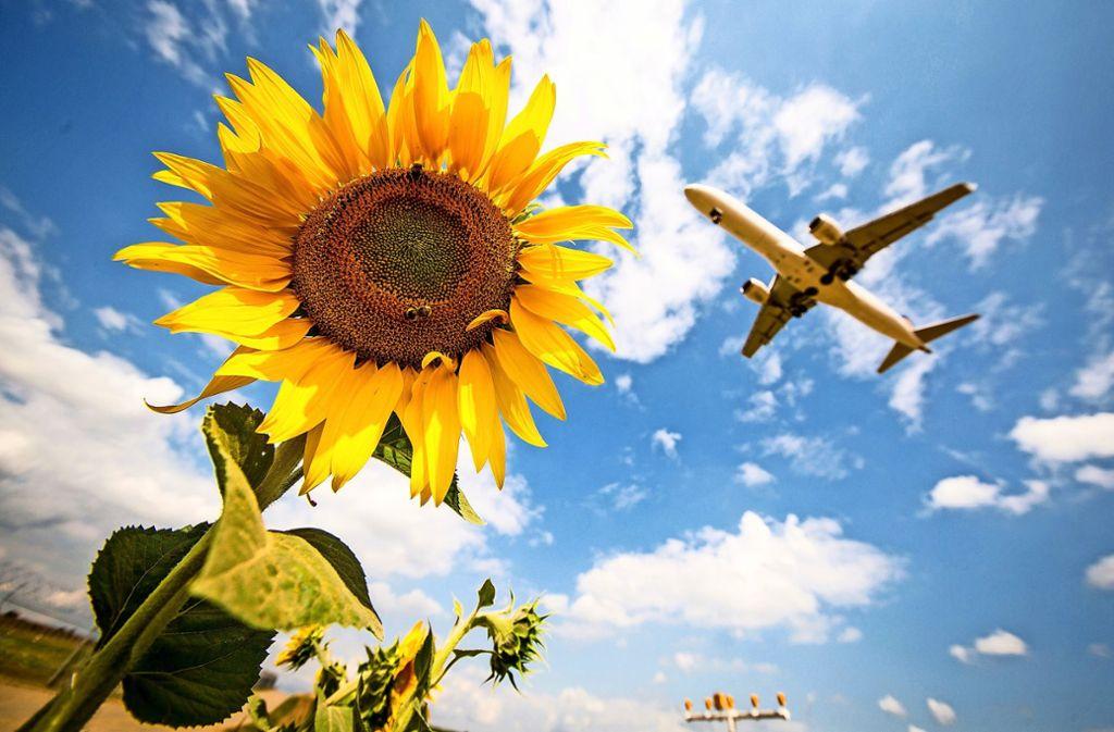 Die Steigerungszahlen im Luftverkehr forcieren auch die Diskussionen über den Klimaschutz. Foto: dpa