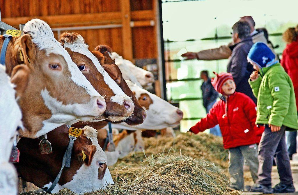 Bei den Veranstaltungen der Gläsernen Produktion können Besucher einen Blick hinter die Kulissen von landwirtschaftlichen Betrieben im Kreis Böblingen werfen. Foto: factum/Weise