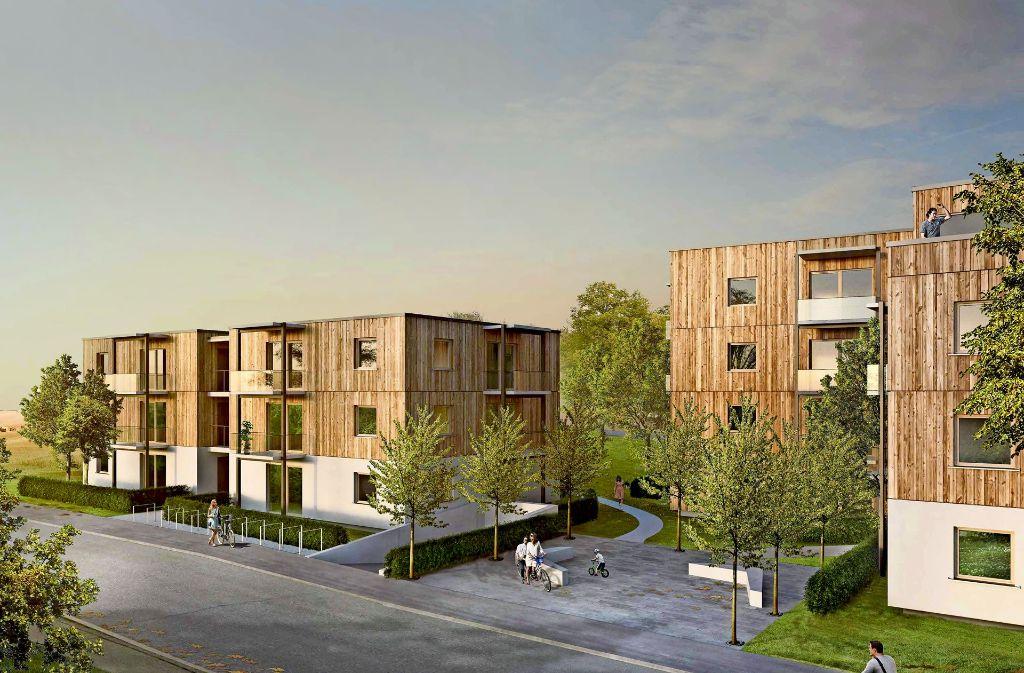 """In  diesen würfelartigen Gebäuden namens """"Cube 11"""" sollen die anerkannten Flüchtlinge wohnen. Foto: Wohnungsbau Ludwigsburg"""