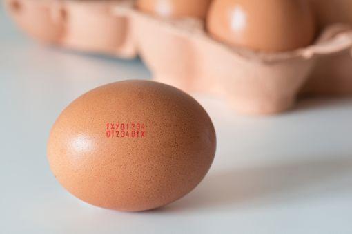 Was bedeutet der Code auf den Eiern?