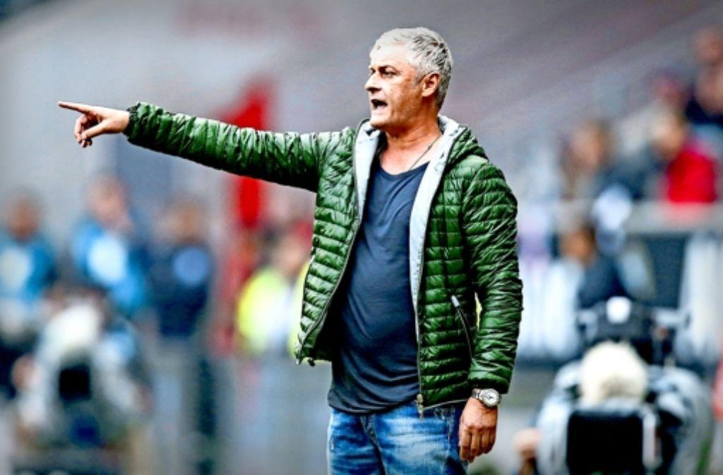 Da geht's lang zum  gegnerischen Tor: Die VfB-Spieler folgen im Moment der Richtung, die der Trainer Armin Veh  vorgibt. Foto: Getty