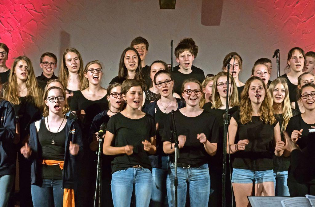 Die Jugendkantorei der evangelischen Kirchengemeinde Vaihingen  hatte beim Deutschen Evangelischen Kirchentag in Berlin vier Auftritte. Foto: privat