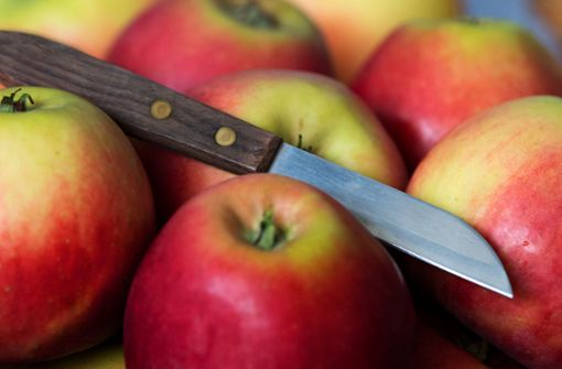 Falscher Messerschleifer bestiehlt Seniorin