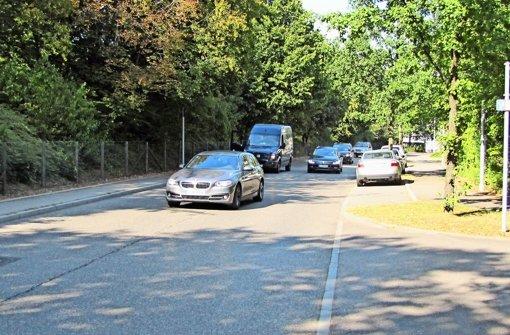 Autofahrer zum Bremsen zwingen
