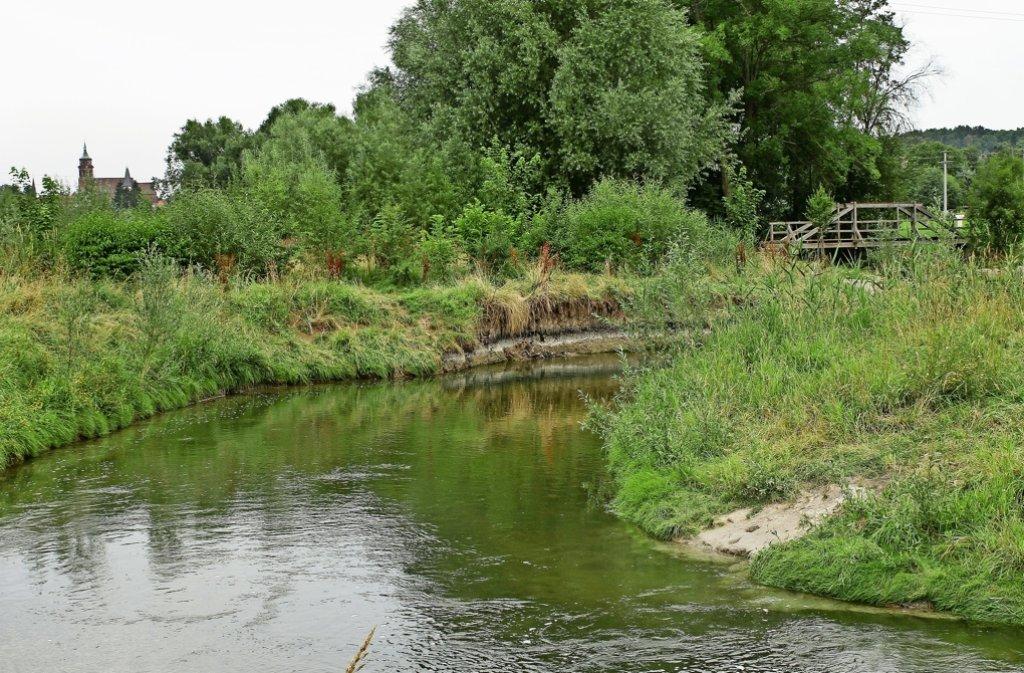Fische, Angler und Badegäste fühlen sich hier wohl. Foto: factum/Bach