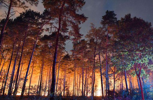 Feuerwehr kämpft gegen riesigen Waldbrand bei Berlin
