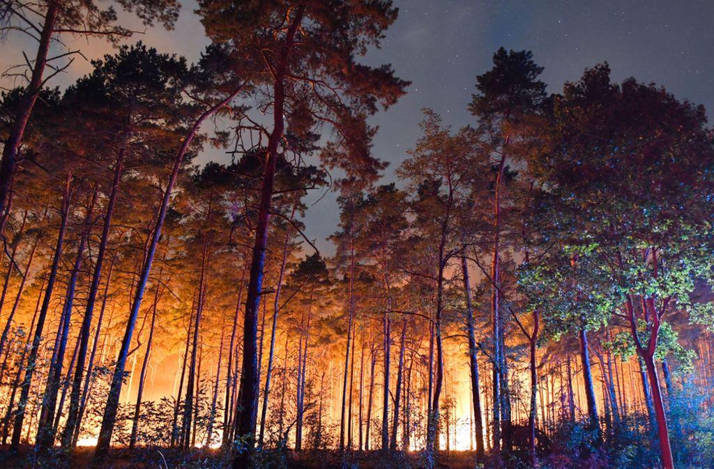 Hell erleuchtet ist ein brennender Wald nahe Klausdorf. Foto: dpa-Zentralbild