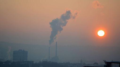 Genug frische Luft im Stadtbezirk Vaihingen am Dienstag