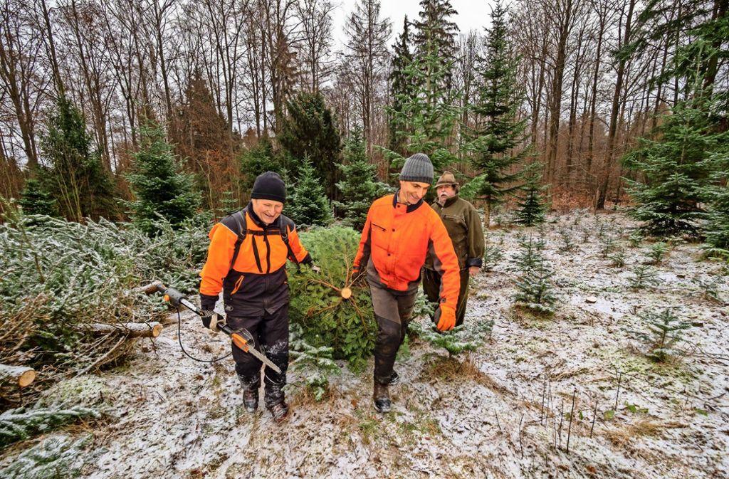 Bernhard Arzt, Werner Leeger und Alfred Bidermann (von links) sind drei aus dem Team, das sich seit Langem für den Weihnachtsbaumverkauf engagiert. Foto: factum/Weise