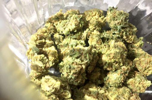 Polizei beschlagnahmt mehrere Tonnen Cannabis