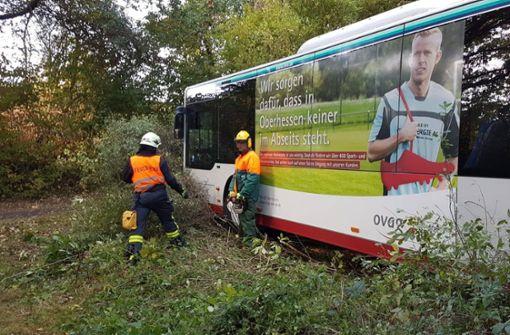 Voll besetzer Bus rauscht ohne Fahrer in Wald