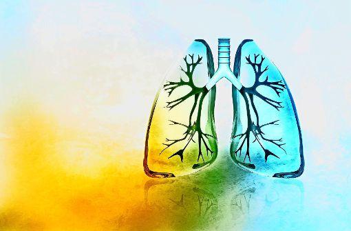 Sauerstoff auf Reisen
