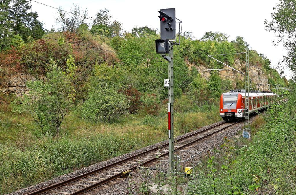 Dieser Schienenabschnitt zwischen Weil der Stadt und Malmsheim ist nur eingleisig. Hier wird es eng. Foto: factum/Jürgen Bach