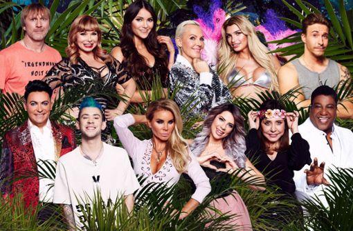Das sind die Teilnehmer beim RTL-Dschungelcamp