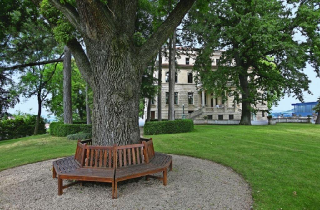 Der Garten Der Park vor dem Bosch-Haus ist im Stil eines englischen Landschaftsgartens angelegt worden: Einzelne große Bäume stehen wie Solitäre zwischen weiten Rasenflächen. Foto: Horst Rudel