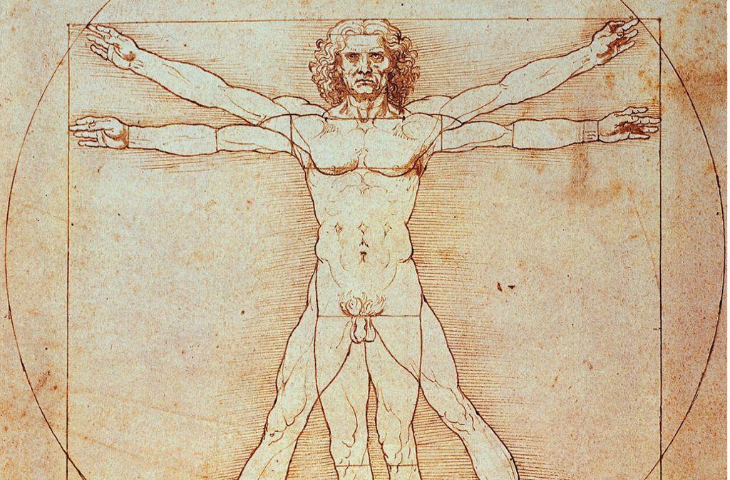 """""""Der Vitruvianische Mensch"""" von Leonardo da Vinci Foto: picture-alliance //Rainer Binder"""