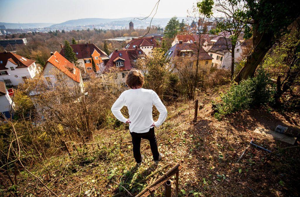 So sah der Hang  nach der illegalen Abholzaktion aus.Foto: Lichtgut/Leif Piechowski Foto: