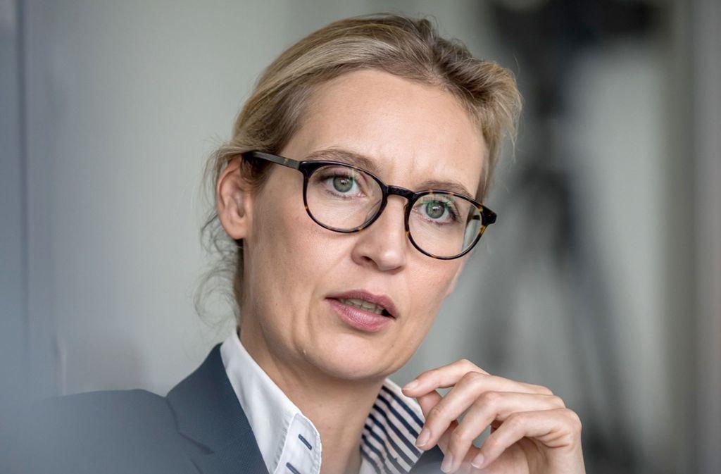 Alice Weidels Wahlkreis liegt am Bodensee – beim dortigen Kreisverband ging die Spende ein, die nun für Schlagzeilen sorgt. Foto: dpa
