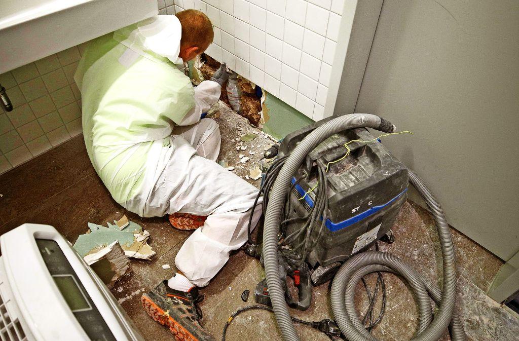 In der Mensa Leckerhalde werden Leitungen in den Wänden inspiziert. Foto: Gottfried Stoppel