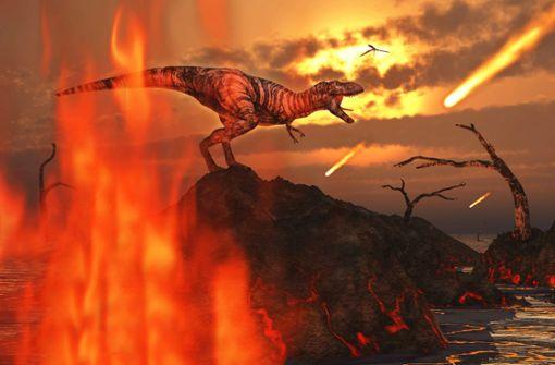 Neue Fakten zum Untergang der Dinos