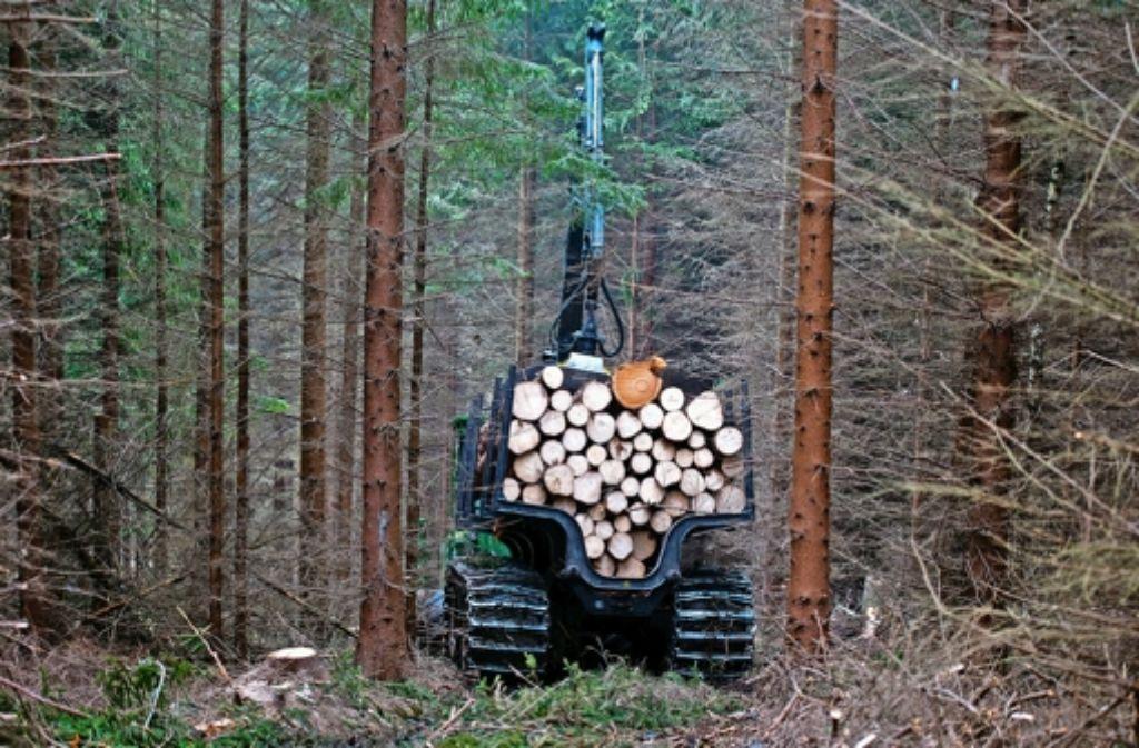 Die Holzvermarktung von Staatsforst  sowie privaten kommunalen Waldbesitzern muss in Baden-Württemberg dem Bundeskartellamt zufolge getrennt werden. Foto: dpa