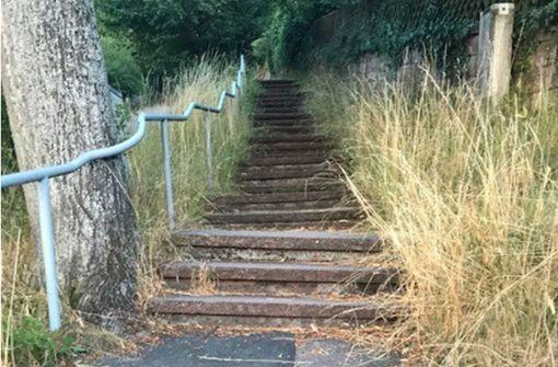 Unkraut säumt die Treppe zum Engelberg