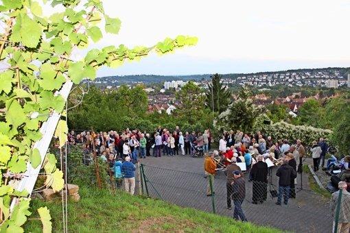 Besucher feiern am Lemberg den Auftakt zur Weinlese